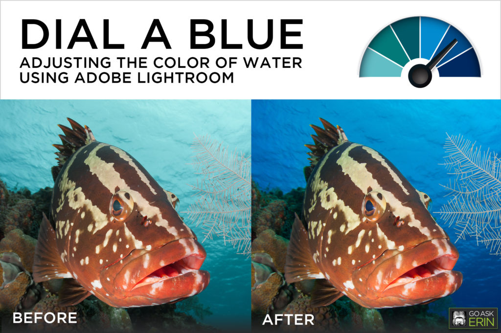 Dial-a-Blue - Adjusting the Color of Water using Adobe Lightroom