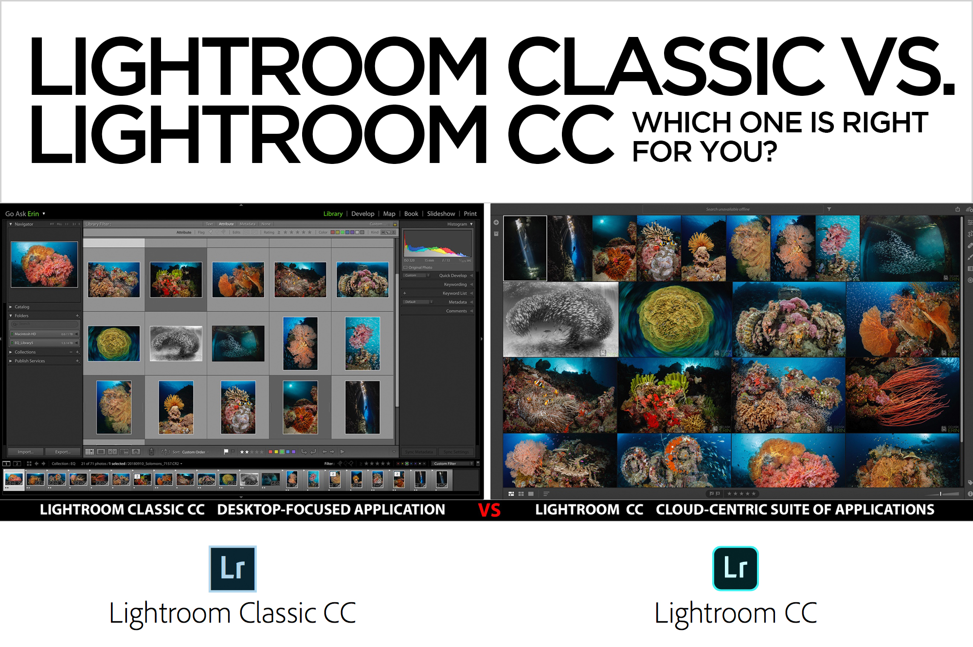 Lightroom Classic CC vs. Lightroom CC - Which one is right for you? - Go  Ask Erin